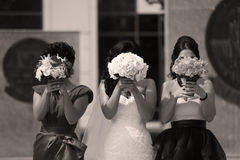Bridesmaids and bride Royalty Free Stock Images