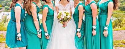 Bridesmaids Royalty Free Stock Images