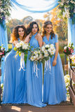 Bridesmaids in park. On the wedding day royalty free stock photo