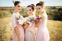 Bridesmaids in pink dresses with bouquets royalty free stock photo