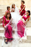 Bridesmaids in pink dresses surrounded a bride sitting under her stock photos