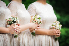 Bridesmaids. On wedding party of their best friend stock image