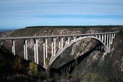 Bridge. A fantastic bridge in Tsitsikamma National Park - South Africa Royalty Free Stock Images