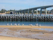 Bridge. To Philip island (Philip island, Victoria, Australia Royalty Free Stock Photos