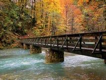 Bridge. Over the bridge to beautiful fall Stock Photos