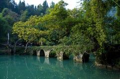 The bridge Stock Photography