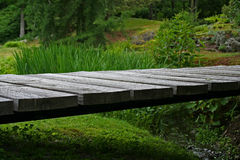 Bridge. A small wooden bridge in a lush green forest Royalty Free Stock Images