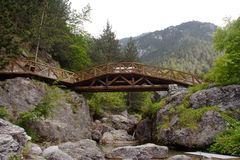 A bridge. In national park stock image