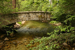 Bridge. A bridge over a creek, everything lush and green Royalty Free Stock Images