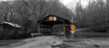 Free Bridge Stock Image - 37006701