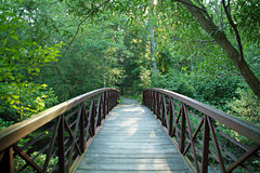 Bridge. Wooden foot bridge with trees Royalty Free Stock Image
