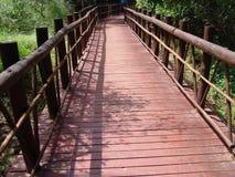 Bridge. Wooden bridge in the bush Stock Images