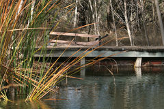 Bridge. Over a pond Stock Image