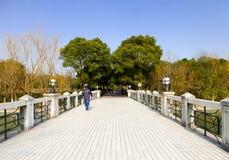 A bridge above lake Stock Photography