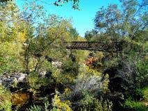 Bridge Above the River. A bridge is high above the Santa Fe River Stock Photos