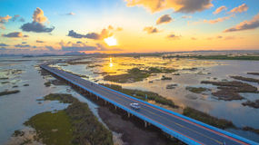 Bridge above the swamp Royalty Free Stock Photo