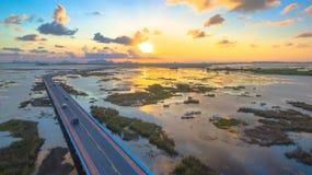 Bridge above the swamp Royalty Free Stock Photos