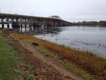 Bridge across the bay royalty free stock images