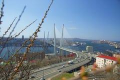 The bridge across the Bay, in the port city. sunny day and flourishing greenery. Marine City high bridge across the Bay, the sunny weather and beautiful Stock Photos