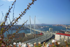The bridge across the Bay, in the port city. sunny day and flourishing greenery. Marine City high bridge across the Bay, the sunny weather and beautiful Royalty Free Stock Images