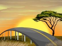 Bridge across the field at sunset. Illustration Royalty Free Stock Image