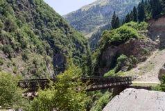 The bridge across the gorge Royalty Free Stock Photo