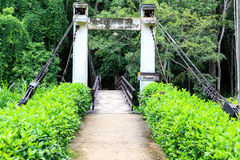 Bridge across green garden Royalty Free Stock Photography