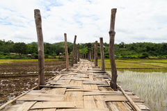 Bridge across rice field white cloud Royalty Free Stock Images
