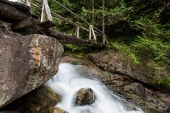 Bridge Across a River Creek. Wooden Bridge across a a running river. Taken while traveling to Widgeon Lake, British Columbia, Canada Royalty Free Stock Photo