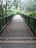 Bridge across the river in park, perspective view Royalty Free Stock Images