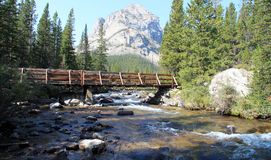 Bridge across a scenic mountain stream. Quaint old wooden bridge across a scenic mountain stream with forested banks and a view through to a high mountain peak Stock Images