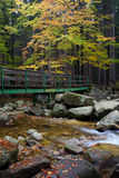 Bridge Across Stream in Autumn Forest Stock Photo