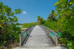 Bridge across stream between islands at Maldives. Bridge across stream betwwen tropical islands at Maldives Stock Photography