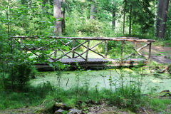 The bridge across the swamp in the Park Stock Photo