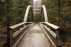 Bridge in a alaska forest royalty free stock photography