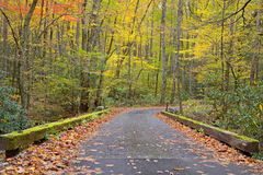 Bridge in Smoky Mountains during fall Stock Images