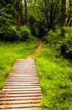 Bridge along a trail in a lush forest in Codorus State Park. Pennsylvania Stock Photos