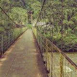 Bridge Amazonia Ecuador Royalty Free Stock Photos