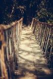 Bridge. Ancient bridge through the river in national park Datanala in Dalat, Vietnam Stock Photo