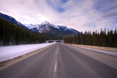 Bridge for animals in Banff National park Royalty Free Stock Photo