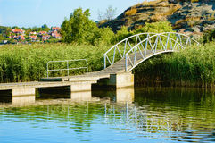Bridge with arch over reed Royalty Free Stock Image
