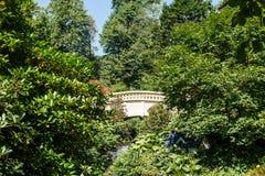 Bridge Arching Through Green Trees Royalty Free Stock Images