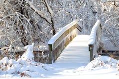 bridge att följa som är tungt över den skogsbevuxna inställningssnowströmmen Royaltyfri Foto