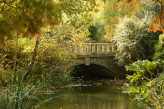Bridge in autumn colours Stock Photo