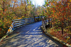 Bridge in Autumn Forerst Stock Photos