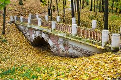 Bridge in autumn forest stock photos
