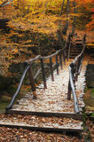 Bridge in autumn forest Royalty Free Stock Photos