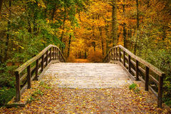 Bridge in autumn forest Royalty Free Stock Image