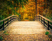 Bridge in autumn forest Royalty Free Stock Photo