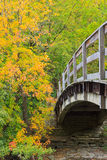 Bridge into autumn forest Stock Image
